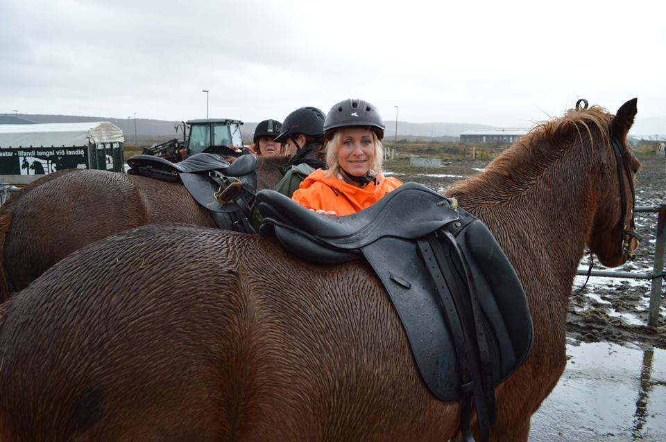carol horse